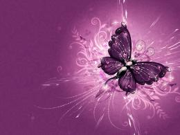 Wallpaper Purple in high resolution for freeGet Wallpaper Purple 288