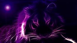 Abstract Purple HD Wallpapers 1869