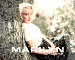 Marilyn Monroe Desktop Wallpapers 1124