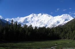 Nanga Parbat in Kashmir, India 1353