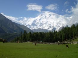 Nanga Parbat Mountain Wallpaper 302