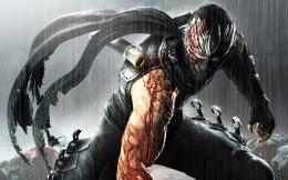 Ninja Gaiden 3 Game | 2560 x 1600 | Download | Close 1092