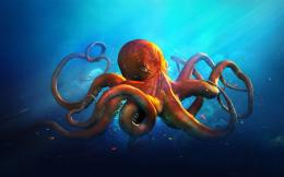 Octopus Desktop Wallpapers 1372