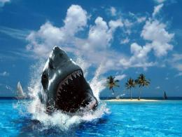 Shark Wallpapers with sea backgrounds suitable for adventure\'s desktop 1170