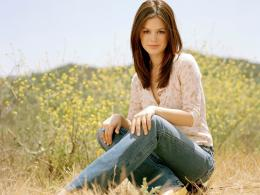 Rachel Bilson Latest Wallpapers 2014 403