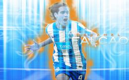 Radamel Falcao Wallpaper is available for download in following sizes: 264