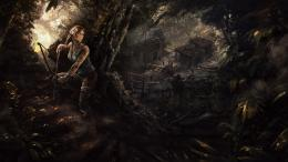 Rise of The Tomb Raider 2015 Wallpapers 1993