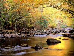 Nature River WallpapersWallpaper Pin it 1133