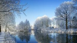 Nature Tree Winter River the Desktop Wallpapers,1366*768 HD Wallpapers 140