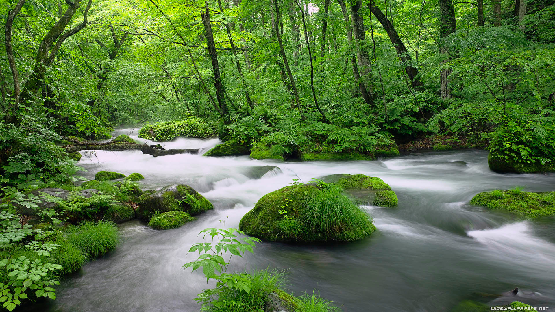 rivers wallpapers static river nature 1920x1080 225