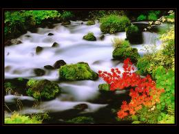 River nature HD Wallpaper 1214