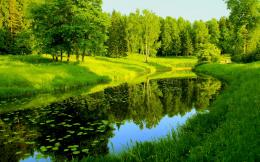 Nature Trees River Reflection HD Wallpapers 312