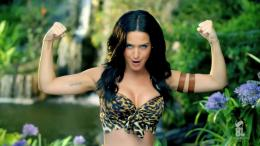 Perry Roar Album Wallpaper Desktop Wide laptop wallpapers, wallpaper 1525