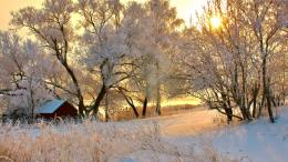 1366x768 Romanian Winter desktop PC and Mac wallpaper 757