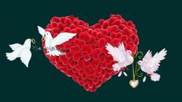 HomeOthersLoveLove romantic birds couple hd wallpapers 1870