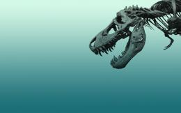 Dinosaur Wallpaper #2: T Rex Skeleton 1984