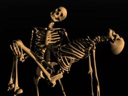 3DD Skeletons Wallpaper 1024x768 3DD Skeletons 132