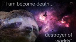 Sloth wallpaper 1373