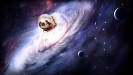 Sloth WTF Stars Planets wallpaper background 1176
