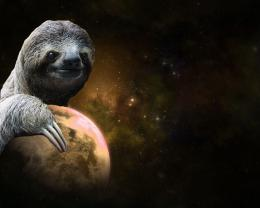 14 00 creature hugs love outerspace planet sloth sloths space universe 1261