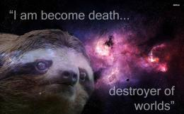 Sloth wallpaper 1697
