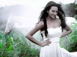 Sonakshi Sinha HD Wallpapers 1113