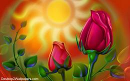 Sun rose wallpaper free flowers hd desktop wallpapers at 566