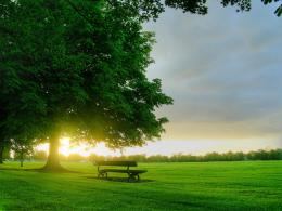 bench in sunlight desktop wallpaper 22553 456