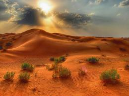 1600x1200 Sunlight Desert desktop PC and Mac wallpaper 1878