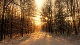 1920x1080 Winter Forest Road & Sun Light desktop PC and Mac wallpaper 640