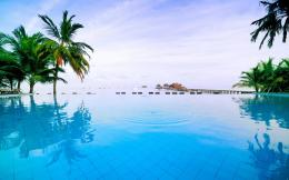maldivian swimming pool wallpaper tags islan tree maldivas pool 146