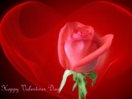 1024x768 Happy Valentines Day desktop PC and Mac wallpaper 1212
