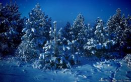 holiday wallpapers christmas siberian winter christmas siberian winter 304