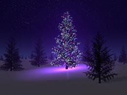 Winter Holidays Desktop Wallpapers 665