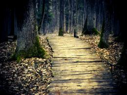 wooden path lights wooden path beautiful picture wooden path desktop 1122