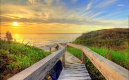 Wooden path to the golden sunset wallpaper 301