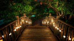 wooden path beautiful picture wooden path desktop background image 1977