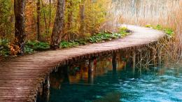 wooden path in forest wooden path stunning wallpaper wooden path 1861