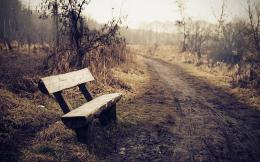 Dirt Path Wooden Bench Wallpapers 1509