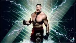 wrestler brock lesnar hd wallpapers 1973