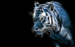 Amazing Tiger, 3D, Desktop, HD Wallpaper wallpapers 1678