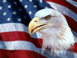 Awesome Eagle Front American Flag Wallpaper 1730