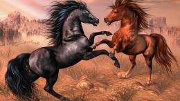 hd horses wallpaper galloping horses hd picture of arabic horses horse 1002