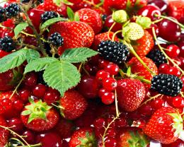 Full View and Download Hd Berries Wallpaper with resolution of 506