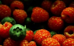 HD Wallpapers » 1440x900 » Nature » berries free HD nature 1603
