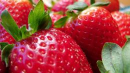 "Home » Posts tagged ""Fresh StrawberriesHD Wallpapers\"" 450"