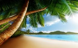 Beach caribbean Wallpapers Pictures Photos Images 1998