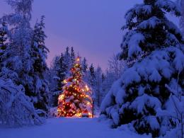 High Definition Pictures HD Christmas Wallpapers Desktop Backgrounds 1376