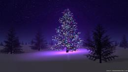 Christmas Night Tree HD Wallpapers 1366x768 Christmas Wallpapers 1942