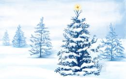 Christmas tree Desktop wallpapers 1680x1050 920